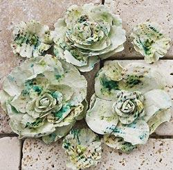 Gallery Roses-Pierre