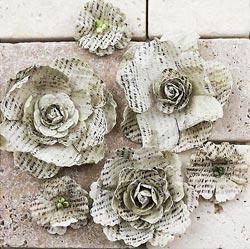 Gallery Roses-Quillen